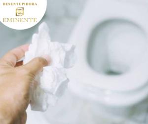 Como Desentupir Vaso Sanitário Entupido com Papel Higiênico