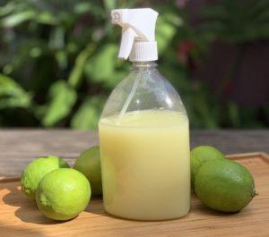 Limão e Borrifador